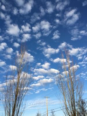 시애틀 구름