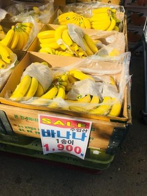 싱싱한 바나나