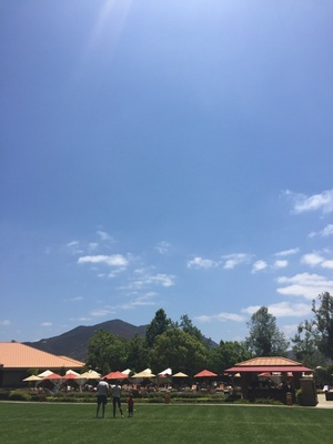 This is Southern Cal sunny da…