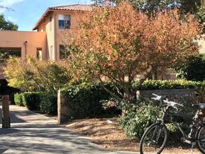 작은 기숙사건물과 나무 그리고 자전거