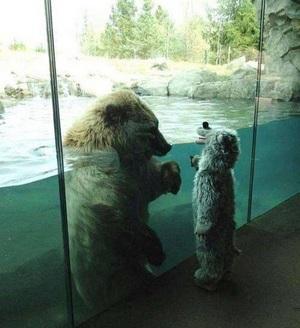 동물과 애기의 교감