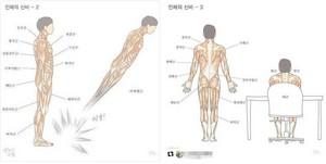 인체 근육이름 찾다가....