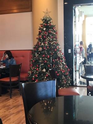 여기도 Christmas tree  하나요