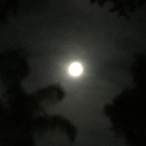 68년만에 뜬 Super Moon