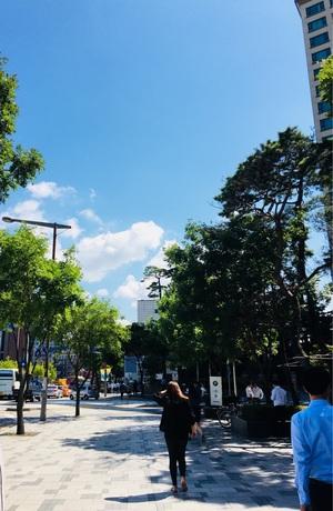 서울은 맑음
