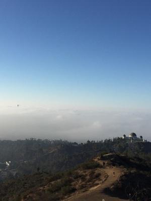구름에 잠긴 LA 다운타운