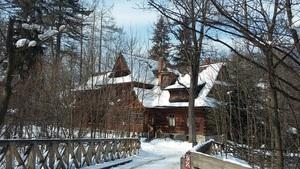 운치있는 통나무집