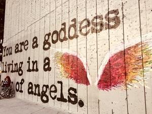 천사가 남기고 간 날개