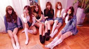 제15회 한국일보 음악대축제 출연진 1 :: 에이핑크